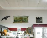 Allan McDonald, Greymouth (Second hand shop) 2009 Diptych - top image