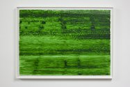 Patricia Dauder, Green 2 Teahuppo, 2010. Photo by Sam Hartnett