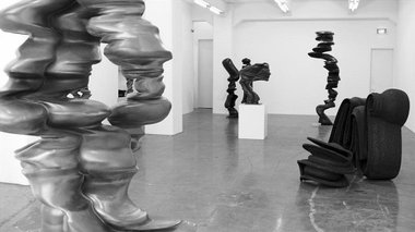 Tony Cragg sculpture installed at Gow Langsford