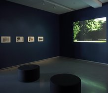 Performative Philosophy: The films and writing of Chris Kraus and Semiotext(e), installation view, MUMA 2011. Photo: Christian Capurro