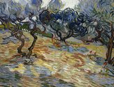Vincent van Gogh, Olive Trees, oil on canvas. Scottish National Gallery © Trustees of the National Galleries of Scotland