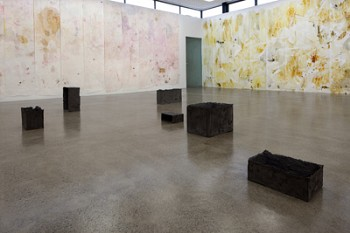 On the floor, Maria Taniguchi, Muses, cement, black oxide, hessian,2012. On the walls, Adam Avikainen works. Right: Traansnikko, 2012, turmeric, ginger, oil of oregano, water on 3M paper. Left, Drift Gene, beets, ginger, oil of oregano, water on 3M paper.