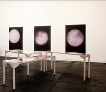 Dark Sky at the Adam Art Gallery. Works on walls by Wolfgang Tillmans. Photo by Robert Cross