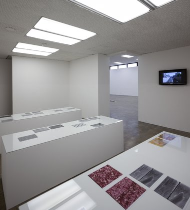 Sean Snyder's video Alalepsis, 2004, on the wall. Video without sound. On the three plinths, photographs from 2009, Untitled (ideological material, printed materials, celluloid); Untitled (digital image sensing devices, LCD screens). Photo Sam Hartnett