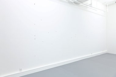 Patrick Lundberg, No title (1), 2012, gesso, acrylic and varnish on pins, dimensions variable, 15 parts