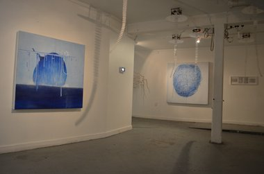 Installation of Carlos Wedde and Hayden Prujean's Deep Sea Dis-comedusae (2012) at Blue Oyster