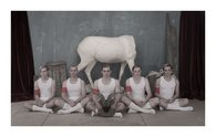Heather Straka, The Missing Link, 2012, c-type print, 2050 x 1320 mm, image courtesy of the artist and Jonathan Smart