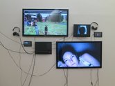 Gretta Louw, Controlling Connectivity, multi-media installation
