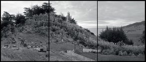 Mark Adams, 19.7.2005, Tokatoka, Wairoa River, Nothland, 2005. Three Gold-toned silver gelatin prints, each 510 x 610 mm