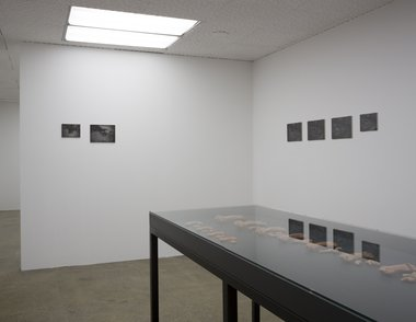 Jorge Satorre's Emic Etic? installation at Artspace. Photo: Sam Hartnett