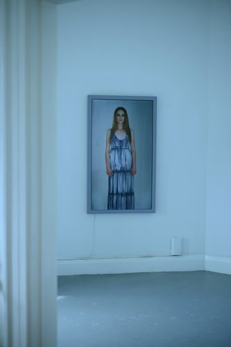 "Yvonne Todd, Denim Seagull, 2013, HD digital video (ed. 1 of 3, 2 AP),  framed Panasonic 55"" LED TV, 130 x 77 x 6 cm"