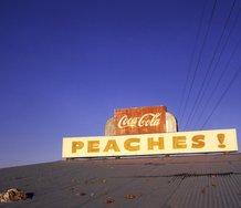 William Eggleston,  UNTITLED (PEACHES!)  1971  © Eggleston Artistic Trust. Courtesy Cheim & Read, New York.