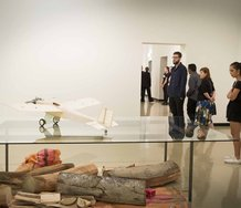 Simon Starling's In Speculum exhibition at City Gallery Wellington. Photo: Justine Hall