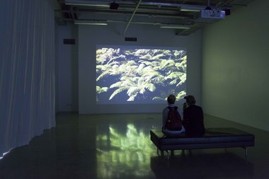 Gavin Hipkins, The Port, in St Paul St Gallery Two. Photo: Tosh Ahkit