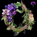 Richard Orjis, Wreath, 2006/2006, C-type print