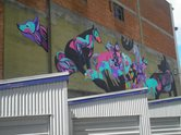 Mika Still, 2014, Stafford Street  - part of the Dunedin Street Art Festival