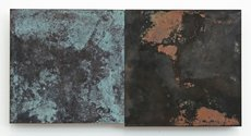 Stephen Bambury, Seasons (Autumn), 2014, chemical action on two brass panels on ply, 170 x 340 mm