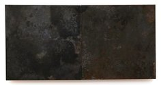 Stephen Bambury, Seasons (Winter), 2014, chemical action on two brass panels on ply, 170 x 340 mm