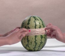 Steve Carr, Watermelon, 2015, Sony HD XCam, duration 33 mins 9 secs