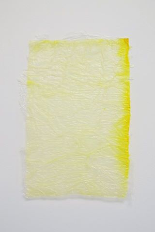 Chelsea Pascoe, No title from Yellow Stack, tissue, dye, polyurethane, 190 x 290 mm