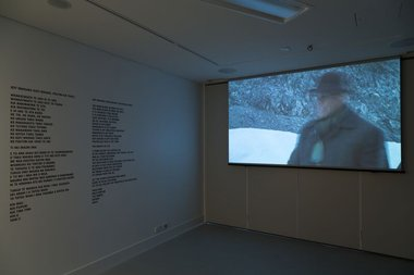 Sasha Huber, 'Agassiz Down Under' at Te Whare Hera