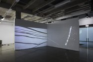 Bianca Hester, Two Channel video projection, 2015, HD video, 9.52 minutes, looped. Photo: Sam Hartnett