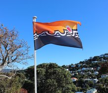Bronwyn Holloway-Smith, Pioneer City Flag, Winner 2015 National Contemporary Art Award