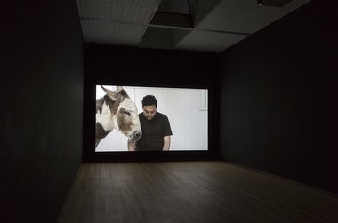 Installation at City Gallery of Shannon Te Ao's two shoots that stretch far out, 2013-14, HD video, cinematography by Iain Frengley.