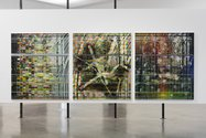 James Cousins, Parks (iv, iii, ii), 2011, acrylic and oil on canvas, 1700 x 1500 mm each. Photo: Sam Hartnett