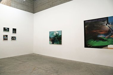 Zhonghao Chen's Environmental Freakology as installed at Jonthan Smart Gallery