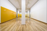 Simon Morris, Yellow Ochre Room, 2015. Acrylic paint. Commissioned by Christchurch Art Gallery. Photo: John Collie