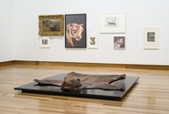 The exhibition Beasts as installed at Christchurch Art Gallery Te Puna o Waiwhetu. Photo: John Collie