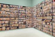 Installation of Ann Shelton's A Library to Scale (2006) at Auckland Art Gallery Toi o Tamaki