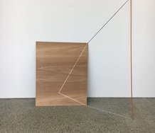 Karyn Taylor, Objective Hypothesis, 2017, cedar, gouache, plywood, animated light, 1500 mm 17000 mm x 700 mm