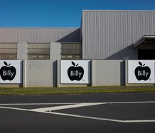 Billy Apple®, Trademark Registration, a Te Tuhi billboard project on Reeves Rd. Photo: Sam Hartnett