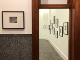 Gordon Walters: Photographs, as installed at Gus Fisher.