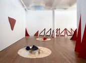 Pauline Rhodes, 'Pleasure and Pain', 1980 -2019 (from a continuum of performative working elements) painted and stained plywood, painted and stained canvas, silk, stained cotton, matagouri cuttings--as installed at Michael Lett