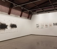 Installation of Kim Lowe's The Silence of the Brush at Ilam Campus Gallery